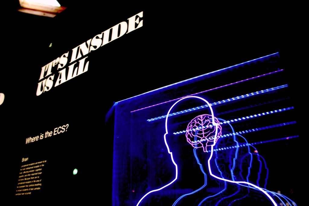 It's inside us all